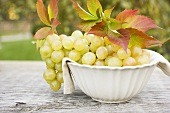 Green grapes and autumn leaves in white bowl