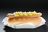Hot dog with gherkins and mustard in paper dish