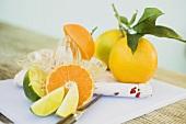 Limes, clementine, oranges and citrus squeezer
