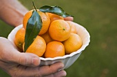 Hands holding a dish of clementines