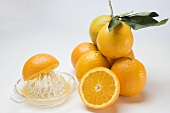 Juice oranges with citrus squeezer