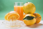 Glass of orange juice, several oranges and citrus squeezer
