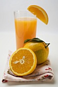 Glass of orange juice and oranges