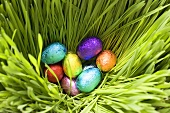 Chocolate eggs, wrapped in coloured foil, in grass