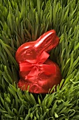 Red chocolate Easter Bunny in grass