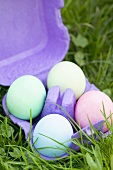 Four coloured eggs in an egg box on grass