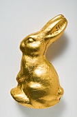 Chocolate bunny in gold foil