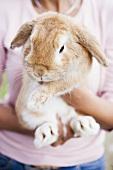 Woman holding live rabbit