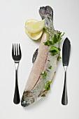Forelle mit Petersilie, Zitronen, Salz und Fischbesteck