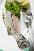 Forelle mit Petersilie und Fischbesteck auf Teller