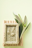 Olive soap and olive branch