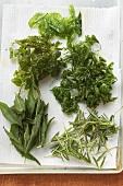 Deep-fried herbs on kitchen roll