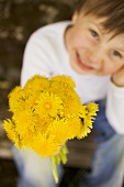 Child holding bunch of dandelions