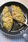 Fish fillets with bread crust in frying pan