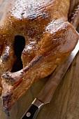 Roast duck (detail)