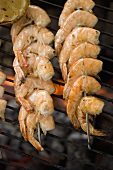 Prawn kebabs on barbecue grill rack