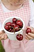 Small girl holding pot of fresh cherries