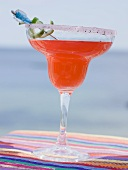 Red cocktail in glass with sugared rim, sea in background