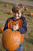 Boy holding a large pumpkin in a field