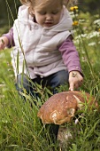 Small girl pointing to large cep in long grass
