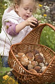 Small girl putting a cep into a basket