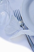 Place-setting in white with butterfly (detail)