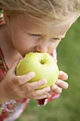 Small girl eating a large green apple