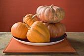 Orange pumpkins on plate