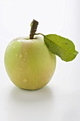 Green apple with stalk and leaf
