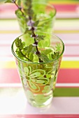 Cold peppermint tea in two glasses