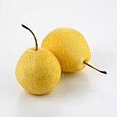 Two Nashi pears