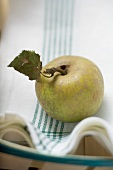 An organic apple on a tea towel