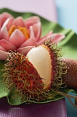 Rambutan, cut open (close-up)