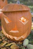 Pumpkin lantern in garden (close-up)