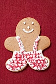 Gingerbread man decorated with icing
