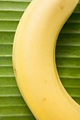 A banana on a leaf (detail)