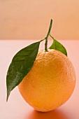 Orange with stalk and leaf