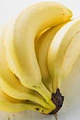 Bunch of bananas (detail)