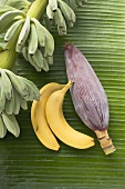 Bananas, unripe, ripe and banana flower
