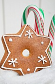 Gingerbread star and candy canes in a boot