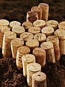 Viele Weinkorken auf Erde