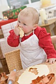 Baby eating unbaked Christmas biscuit