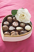 Chocolates in heart-shaped box with white rose