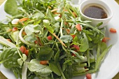 Mixed salad leaves with balsamic dressing