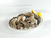 Frische Garnelen auf Teller (ungeschält)