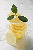 Lemon slices, stacked, surrounded by ice cubes