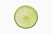 Slice of lime, backlit