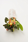 Rice paper rolls filled with vegetables, glass noodles & herbs