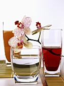 Glasses of hibiscus juice and water (with orchids)