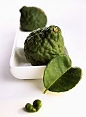 Kaffir limes with leaves